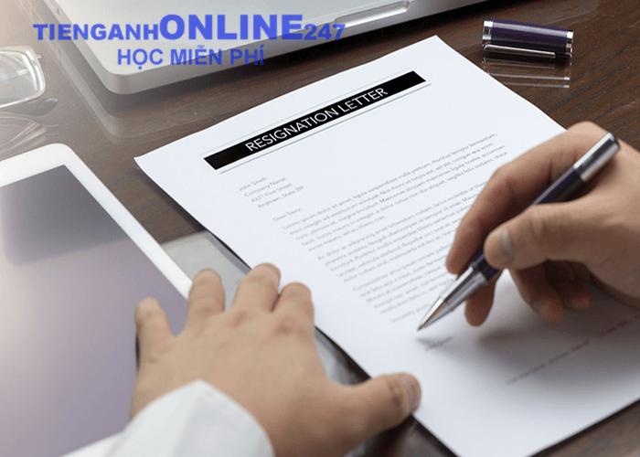 CV tiếng Anh cho nhân viên xuất nhập khẩu