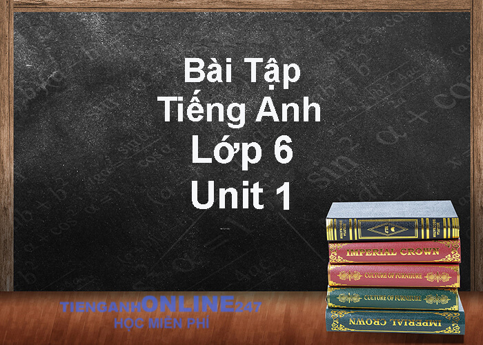 Bài tập tiếng Anh lớp 6 unit 1